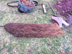 Septic Restoration and Root Removal